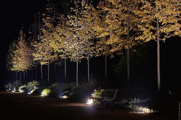 Parc de la Ménardière