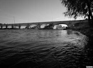 Rive Gauche, le Pont Wilson.