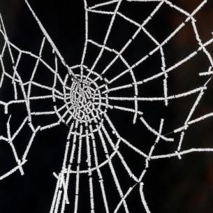 web-givre_07
